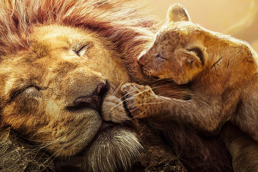O Rei Leo Ganha Novo E Emocionante Trailer Assista